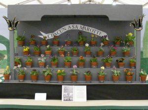 Wigmore and District Gardening Club - guest speaker @ Wigmore Village Hall